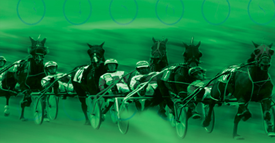 Racing Promotion: Handicapping Contest
